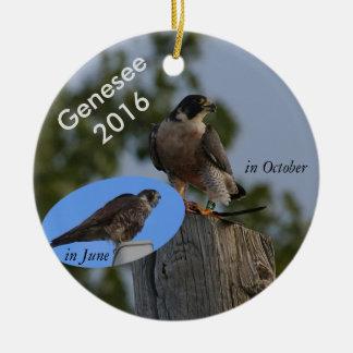 Genesee Verzierung 2016 - im erwachsenen Gefieder Keramik Ornament