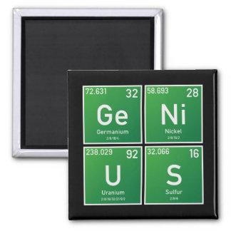 Genie PSEv Quadratischer Magnet