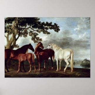 George Stubbs - Stuten und Fohlen in einer Landsch Poster