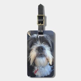 Gepäck-Umbau-(sehr) niedlicher Hund Gepäckanhänger