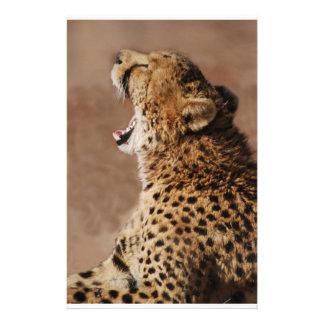 Gepard konnte einen Löwe erschrecken Briefpapier