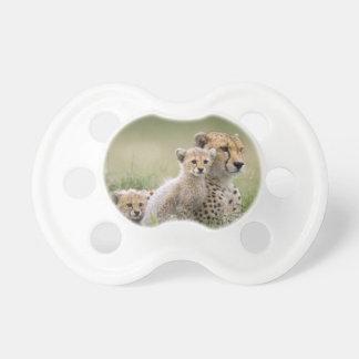 Gepard mit ihrem CUB; Mutterschaft Schnuller