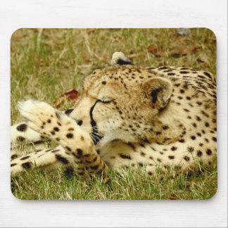 Gepard Mousepad