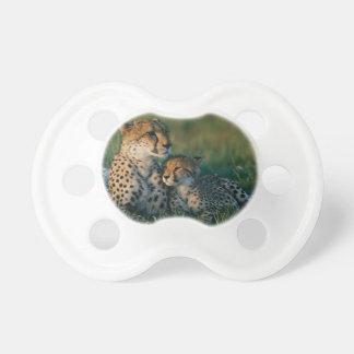 Gepard-Mutter mit ihrem CUB Schnuller