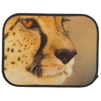 Gepard-Nahaufnahme einer Frau Autofußmatte