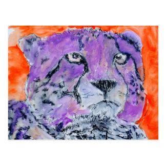 Gepard Postkarten