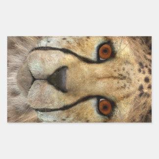 Gepard Rechteckiger Aufkleber