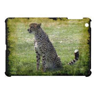 Gepard, wilde Katze, Tier-Liebhaber, Natur iPad Mini Hülle