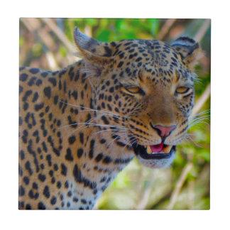 Gepunkteter Leopard Keramikfliese
