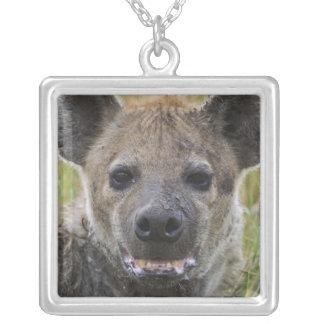 Gepunktetes Hyänenporträt, Crocuta croduta, Masai Halskette Mit Quadratischem Anhänger