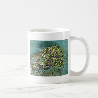 Gerade ausgewählte Oliven auf dem Netz während der Kaffeetasse