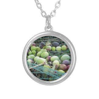 Gerade ausgewählte Oliven auf dem Netz während der Versilberte Kette
