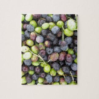 Gerade ausgewählter Olivenhintergrund während der Puzzle