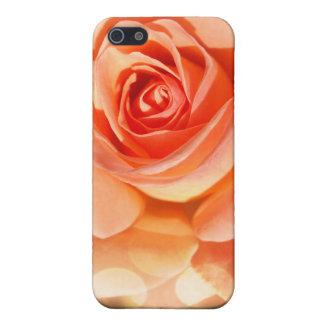 Gerade eine Rose iPhone 5 Schutzhülle