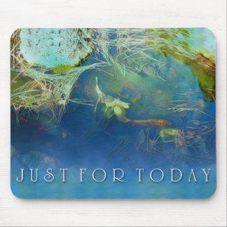 Gerade für heutiger Tag Koi Teich Mauspads