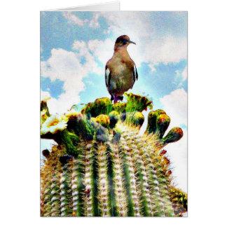 Gerade sitting auf einem Saguaro Karte