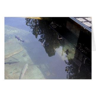 Gerahmt in den fishies karte