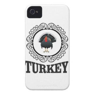 Gerahmte Kunst der Türkei iPhone 4 Hüllen