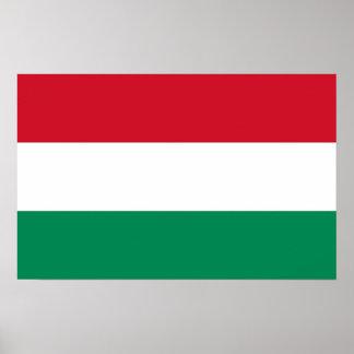 Gerahmter Druck mit Flagge von Ungarn Poster