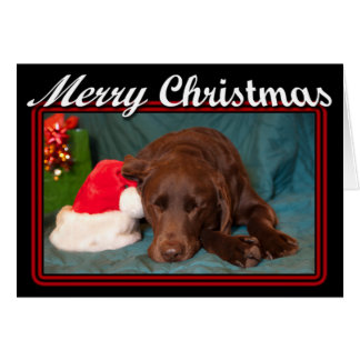 Gerahmter Schlafenschokoladen-Labrador mit Karte