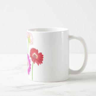 Gerbera-Gänseblümchen Kaffeetasse