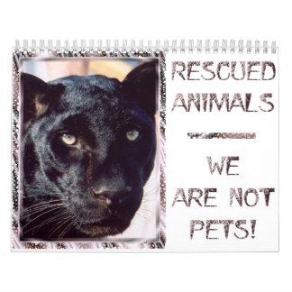 Gerettete Tiere - wir sind nicht Haustiere Kalender