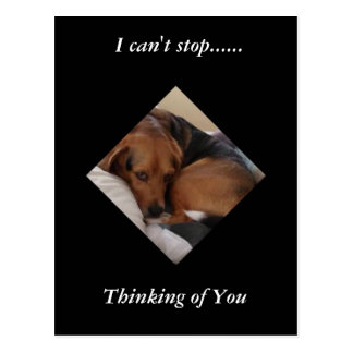 """Geretteter Beagle """"Oliver"""", der an Sie Postkarte"""
