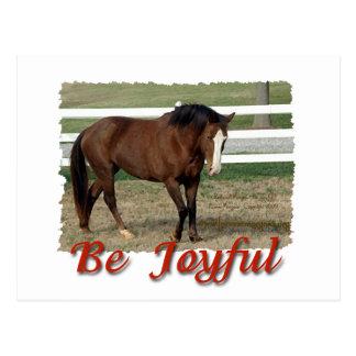 Gerettetes Morgan-Pferd:  Seien Sie froh Postkarte