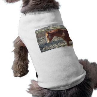Geringfügiges Kastanien-Pferd Shirt
