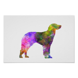German Longhaired Pointer im Watercolor Poster