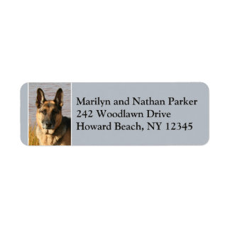 German Shepherd Dog Face Return Address Label 2