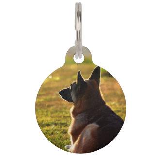 German Shepherd Pet Loss Memorial Pet Tags Tiermarke