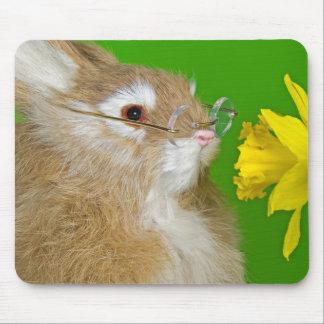 Geruch des Frühlinges Mousepad