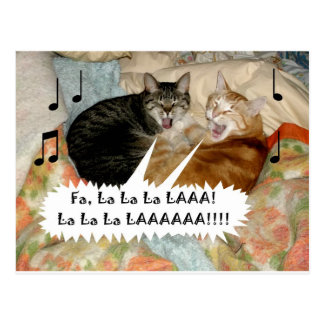 Gesang-Katzen Postkarte