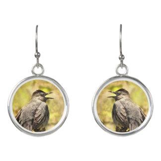 Gesanggrauer Catbird-Halsketten-Ohrringe Ohrringe