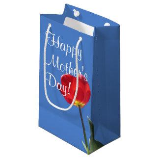 Geschenk-Tasche - rote Tulpe-blauer Himmel 2 Kleine Geschenktüte