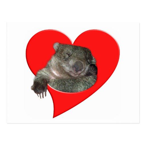 Geschenke des Valentines Tages, Wombat Liebe! Postkarte