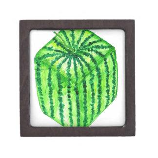 Geschmackvolle Wassermelone Art2 Schachtel