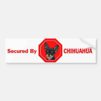 Gesichert durch Chihuahua Autoaufkleber