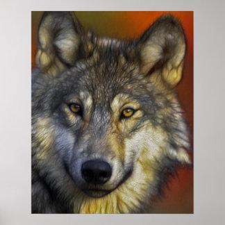 Gesicht eines Wolf-Fotos Poster
