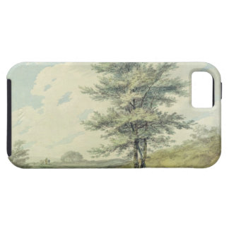 Gestalten Sie mit Bäumen und Zahlen, c.1796 Etui Fürs iPhone 5