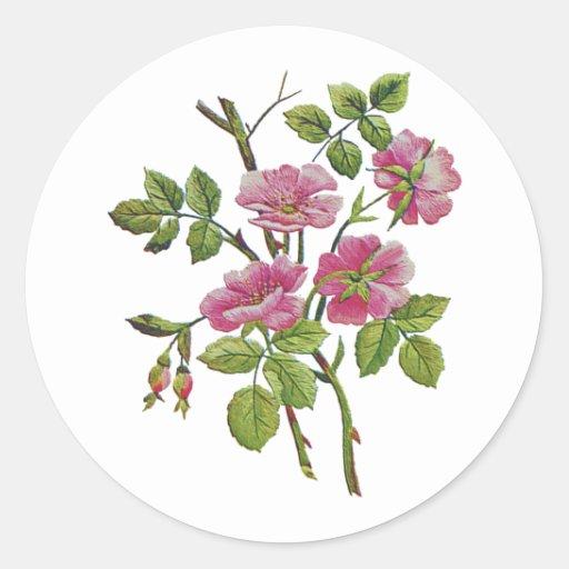 gestickte rosa alte englische rosen runder aufkleber zazzle. Black Bedroom Furniture Sets. Home Design Ideas