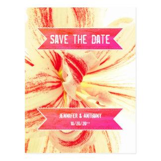 Gestreifte Amaryllis-Blume, die Save the Date Postkarte