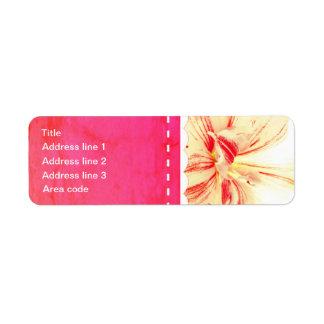 Gestreifte Amaryllis-Blumen-kundenspezifische