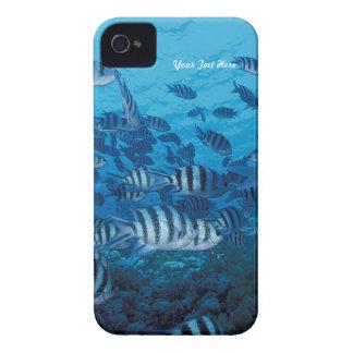 Gestreifte Fisch-Schule - fertigen Sie besonders iPhone 4 Cover