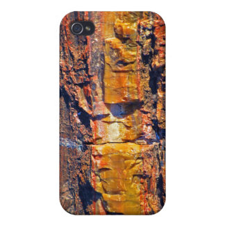 gestreifter Kasten des versteinerten Holzes iPhone 4 Hülle