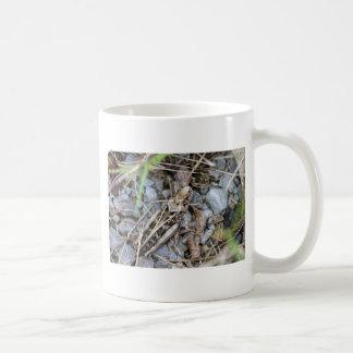 Getarnte Heuschrecke Kaffeetasse