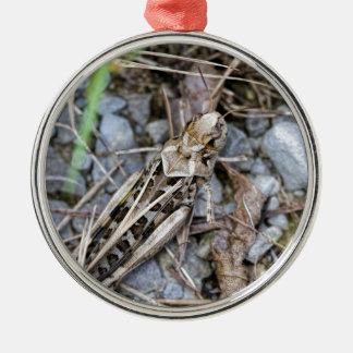 Getarnte Heuschrecke Silbernes Ornament