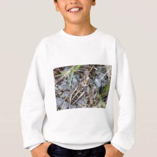 Getarnte Heuschrecke Sweatshirt