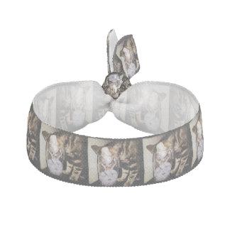 Getränk-Dieb-Katze durch Shirley Taylor Haarband